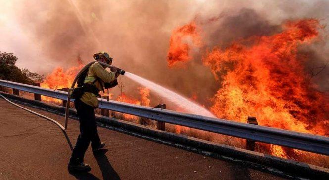 क्यालिफोर्नियाको जंगलमा फैलिएको आगोबाट ४४ जनाको मृत्यु