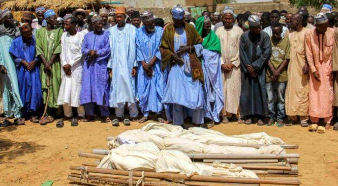 नाइजेरियामा २३ जनाको गोली हानी हत्या