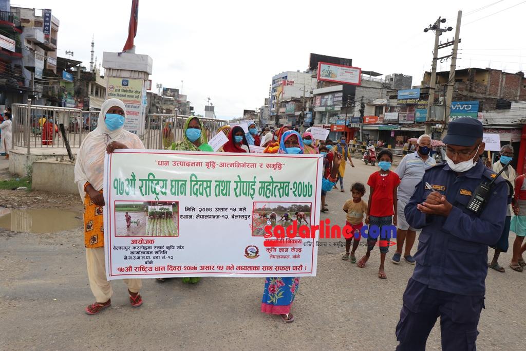 बाँकेमा विविध कार्यक्रम गरी धान दिवस मनाईयो (फोटो कथासहित )