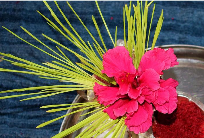 शुभसाइतको प्रतीक शुक्रवार फूलपाती भित्र्याईंदै